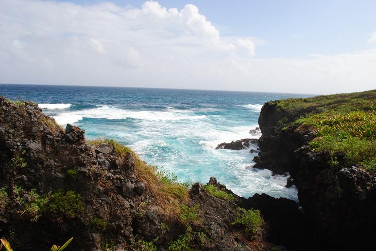 Доминикана Отзыв отеля Орджоникидзе о пляжах и отдыхе в Доминикане