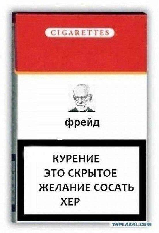 Алиса закажи сигареты купить оптом сигарет в бишкеке на