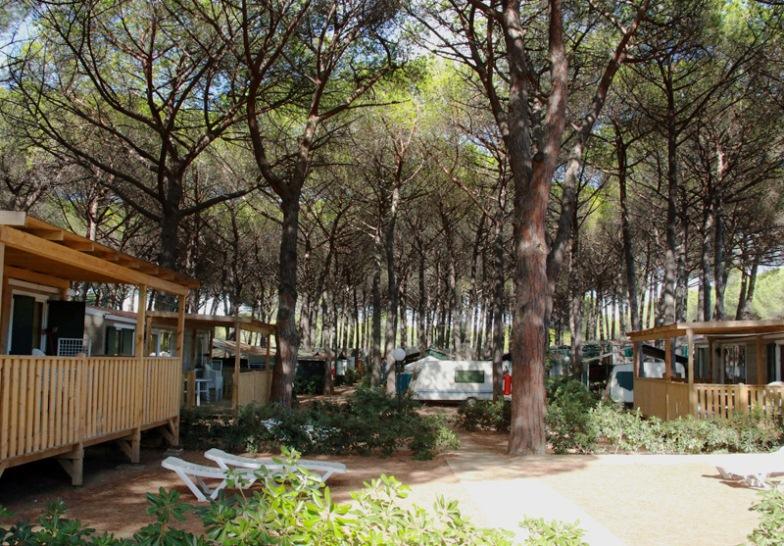 Отзыв сайта Орджо агротуризм кемпинги в Италии Тоскана Болгери